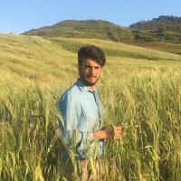 crowdfunding; facebook; culture; agriculture; idea consult